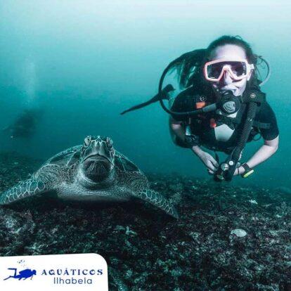 Aquáticos Ilhabela - Mergulhe com tartarugas em Ilhabela