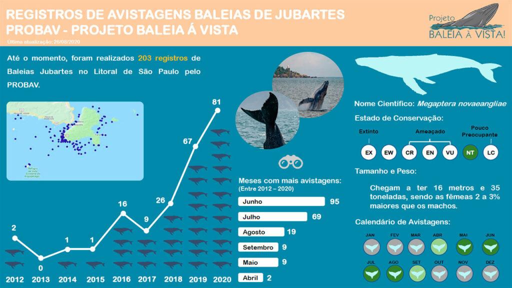 Dados sobre avistamento de baleias no litoral norte - Projeto Baleia à Vista